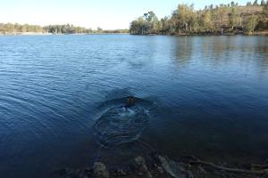 Con esta todo el día en el agua obviamente no se acercaba ningún pez