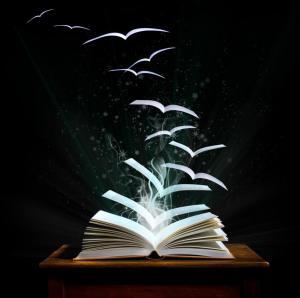 Leer y volar, que gran combinación