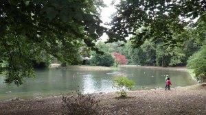 Al lado de este estanque con patitos es donde me puse a dormir...