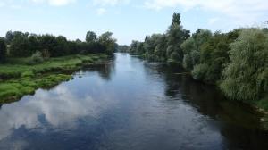 Más Danubio
